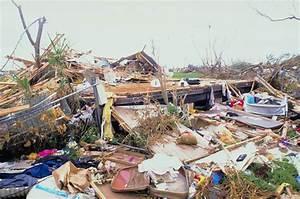 Hurricane Damage Adjuster