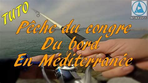 comment cuisiner du congre comment pêcher le congre du bord en mediterranée