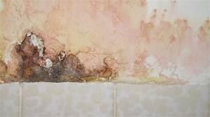 Schimmel An Der Wand : was tun wenn der mieter den schimmel verursacht hat ~ Frokenaadalensverden.com Haus und Dekorationen