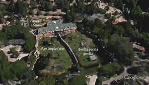 Figura 2 1  Vista Superior Do Templo Dos Primatas Do