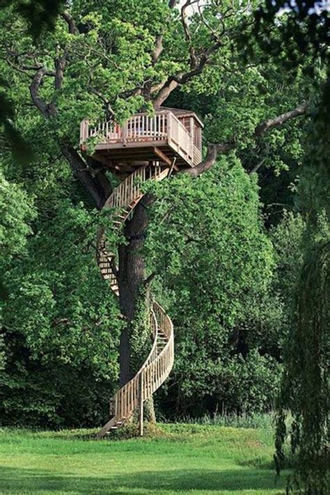 awesome treehouse  childhood dreams home design  interior