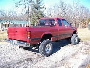 Lowdream 1995 Dodge Dakota Regular Cab  U0026 Chassis Specs