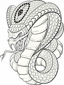 Cobra Black And White Stock Vector Art & More Images of ...
