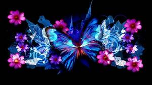 black and pink butterfly wallpaper 1574034 bigthumbnail ...