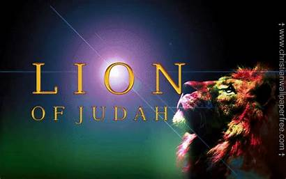 Lion Judah Christian Backgrounds Church Tattoo Christianwallpaperfree