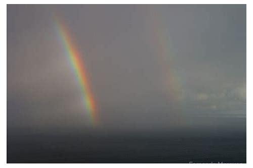 canção do arco iris 2006 baixar