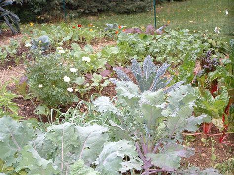 Plant A Fall Garden And Grow Veggies Far Beyond Summer
