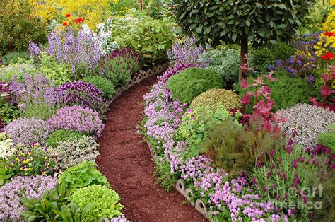 country wall decor ideas garden path photograph by mike nellums
