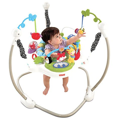 fisher price jumperoo age range sewa fisher price discover n grow jumperoo rental fisher price discover n grow jumperoo sewa