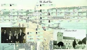 Treeview V2 Family History Software