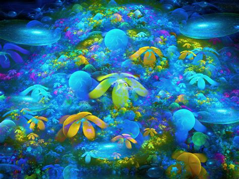 coral reef hd wallpapers