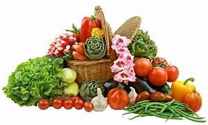 Vegetables Esports Club Summary DOTABUFF Dota 2 Stats