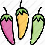 Premium Chilli Pepper Icon Lineal Icons