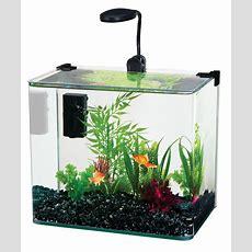 Amazoncom  Penn Plax Curved Corner Glass Aquarium Kit