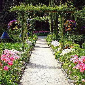 awesome, flower, garden