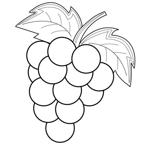 Coloring Grapes by Grapes Coloring Pages Best Coloring Pages For