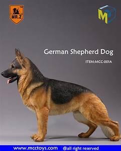 AmiAmi [Character & Hobby Shop] | 1/6 German Shepherd 001A ...