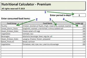 Daily Calories  U0026 Food Nutrition Excel Spreadsheet