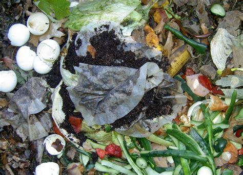 What is compost?   Green Life Tips