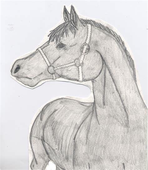 horse pony drawing shaded  macdvl  deviantart