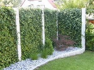 Garten Sichtschutz Pflanzen : sichtschutz garten pflanzen google suche garten landschaftsbau garten landschaftsbau ~ Watch28wear.com Haus und Dekorationen