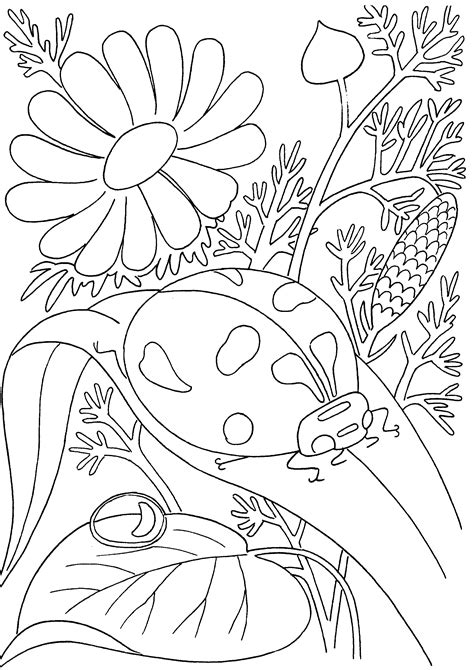 insect coloring pages getcoloringpagescom