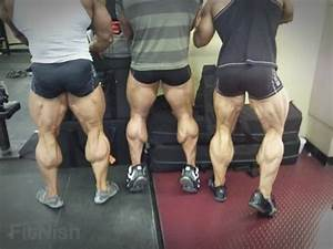 The Low Down on Calves and How Exactly To Train Them