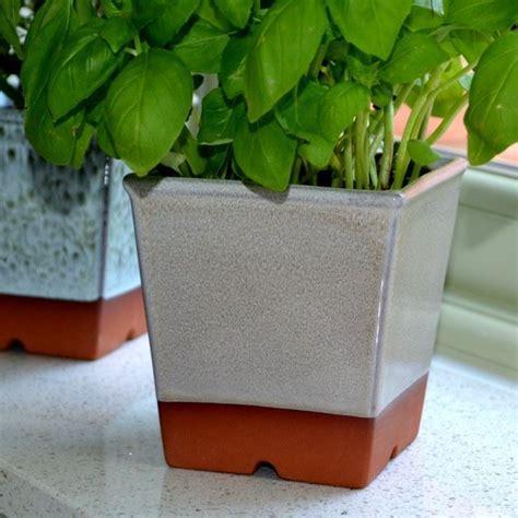 windowsill herb pots weston mill pottery uk