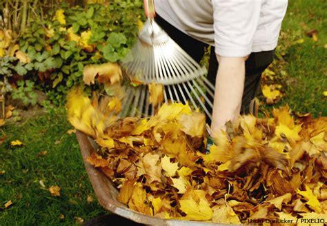 6 Gartentipps für November - Was ist vor dem ersten Schnee