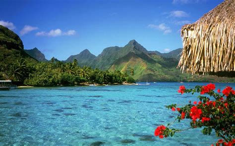 8 best summer vacation destinations the cardinal times