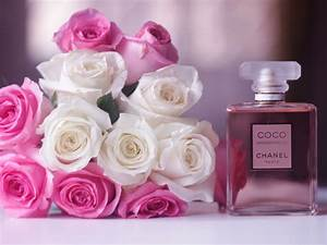Chanel Coco Mademoiselle perfume, white and pink rose ...