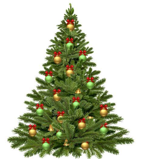 free illustration christmas tree holidays christmas