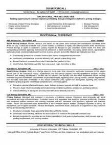 risk management resume summary pricing analyst resume