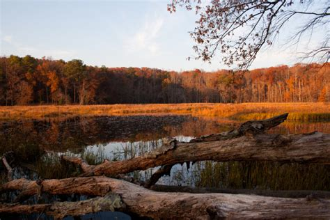 virginia state parks  breathtaking