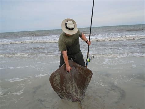 pin  larry beerer  beach fishin crappie fishing tips