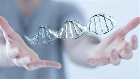 test genetica discovering nutritional needs through advanced genetic