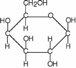 Carbohydrate Molecule Structure | www.pixshark.com ...