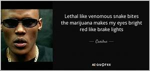 TOP 10 QUOTES BY CANIBUS | A-Z Quotes