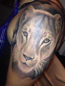 Lioness portrait tattoo by Stevie Monie : Tattoos
