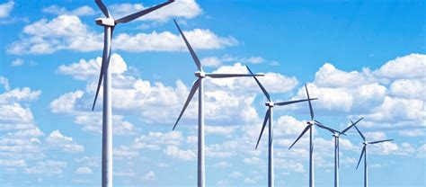 Things You Didn't Know About Wind Energy
