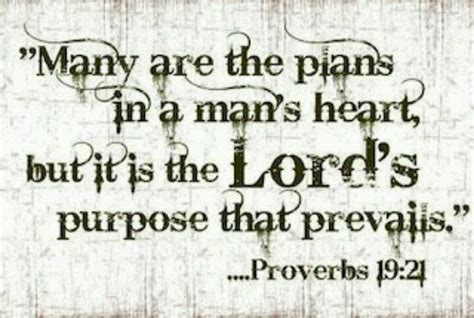 God Has A Plan Quotes Bible