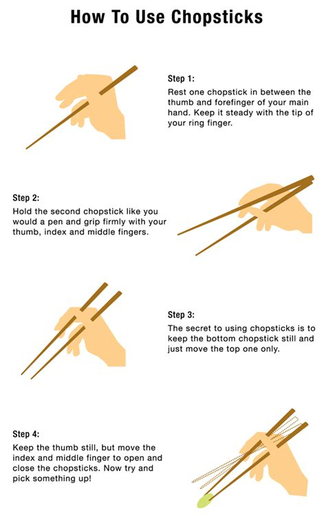 how to hold chopsticks learn how to use chopsticks and how to catch flies japancentre blog