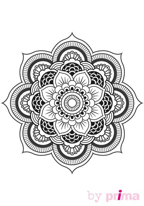 cours de cuisine pour ado mandala et coloriage fleur à imprimer femme actuelle