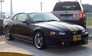 Timeline: 2003 Mustang Roush, Saleen, & Steeda Mustangs - The Mustang Source