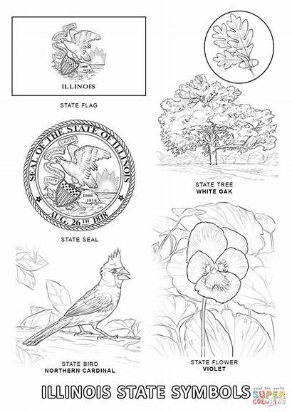 Coloring Pages Kansas State Georgia Flag Flages
