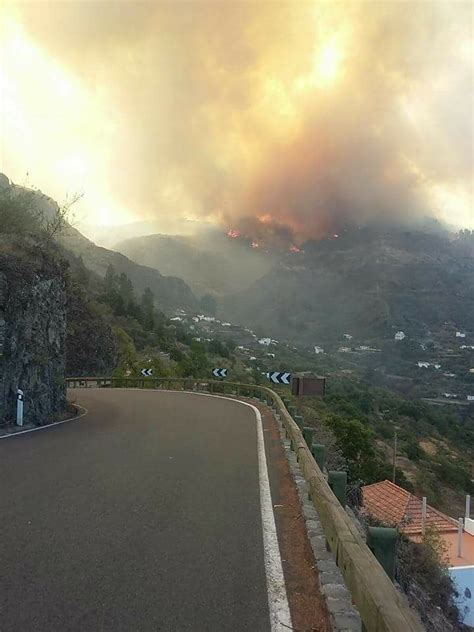 fotos   incendio de tejeda canarias noticias