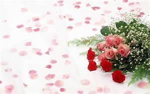 Roses flowers backgrounds Windows Desktop Wallpaper High ...