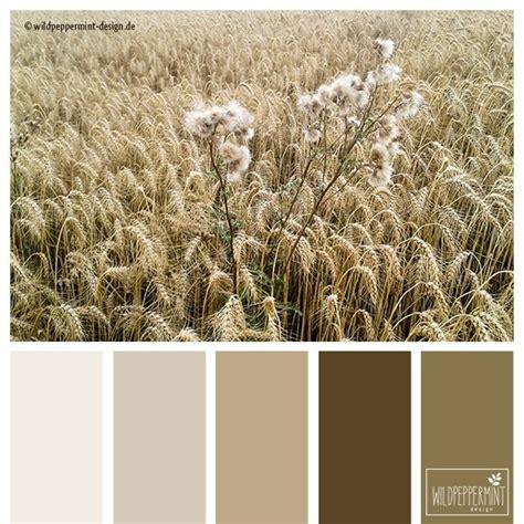Beige Wandfarbe Farbpalette sommerfarben warm braun beige harmonisch soft