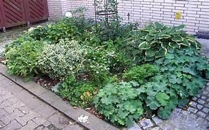 Schattenpflanzen Garten Winterhart : vorgarten neu gestalten ~ Lizthompson.info Haus und Dekorationen