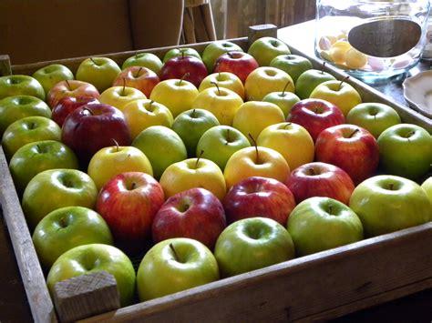 ma cuisine bien aim馥 pommes je vous aime et j ai 1001 bonnes raisons pour ça bien dans ma cuisine